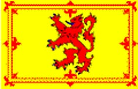 Rampant Lion 8 foot flag